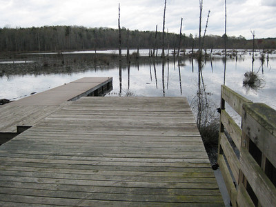 Boardwalk at Big Haynes Creek, Conyers, Georgia