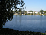 Photo: View of houses and the Savannah River